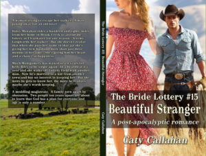 Bride Lottery 15 Beautiful Stranger by Caty Callahan | Sweet romances for young adults