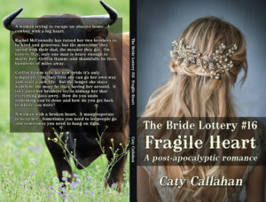 Bride Lottery 16 Fragile Heart by Caty Callahan | Sweet romances for young adults