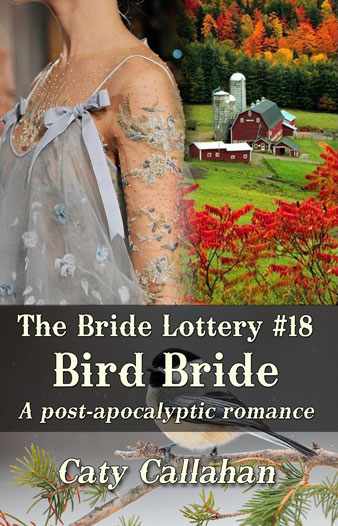 Bride Lottery 18 Bird Bride by Caty Callahan | Sweet romances for young adults