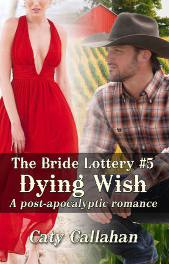 Bride Lottery 5 Dying Wish by Caty Callahan | Sweet romances for young adults