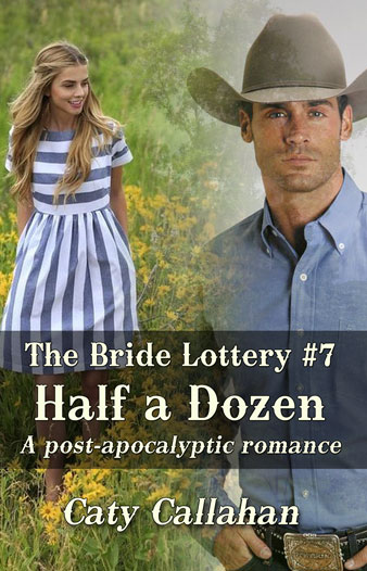 Bride Lottery 7 Half a Dozen by Caty Callahan | Sweet romances for young adults